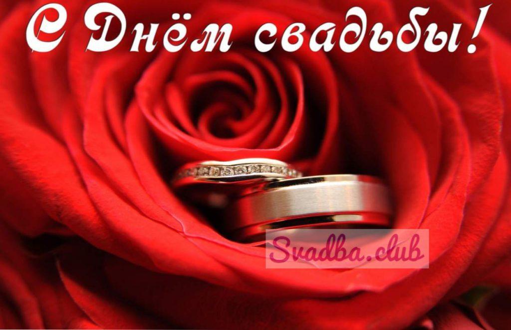 Поздравление свадьба